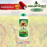 อาหารเสริมพืช แพนต้าโกรว์ 1 ขวด - ส่งฟรี