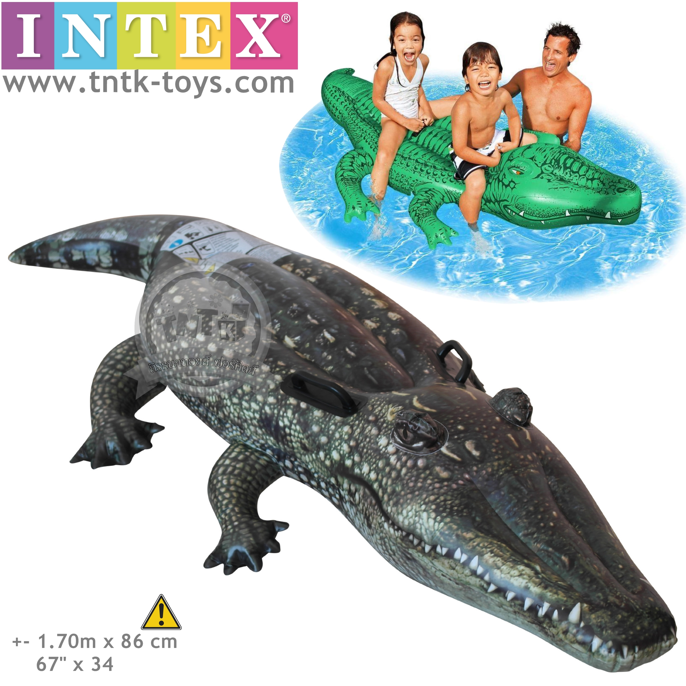 แพยางจระเข้ ยี่ห้อ INTEX ขนาด 170 * 86 CM. ส่งฟรี EMS/เคอรี่