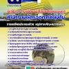 แนวข้อสอบนักวิชาการ (งานติดตามประเมินผลรัฐธรรมนูญ) สำนักงานผู้ตรวจการแผ่นดิน อัพเดทใหม่ล่าสุด
