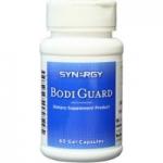Bodi Guard (บอดี้ การ์ด)