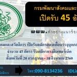 กรมพัฒนาสังคมและสวัสดิการ เปิดรับสมัครสอบเพื่อบรรจุบุคคลเข้ารับราชการ จำนวน 45 อัตรา ตั้งแต่วันที่ 20 กรกฎาคม - 10 สิงหาคม 2560