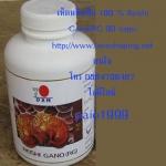 เห็ดหลินจือ 100 % Reishi Gano(RG 30 caps)