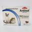 Antinol Cat Exp.05/20 thumbnail 1