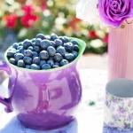 """""""11 สรรพคุณบิลเบอร์รี่"""" สุดยอดผลไม้บำรุงสายตา สารสกัดธรรมชาติในอาหารเสริมผู้สูงอายุ Senior Balance50+"""